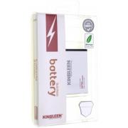 Аккумулятор для Apple iPhone 5S Kingleen